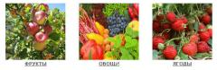 Agro-industrial complex, storage and processing of