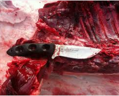 Knives are finishing hunting