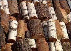 Дрова колотые, резаные дуб, граб, ольха, береза