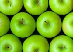 Apples autumn, wholesale.