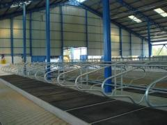 Equipment for livestock complexes