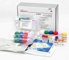 Chlamydophila pneumoniaе-IgА-ИФА-БЕСТ, набор реагентов ИФА Vector Best