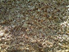 Raw materials wood technical an oak a dead wood,