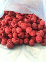 IQF raspberry Extra quality 95%,90%,80% of whole