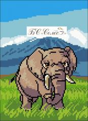 Outline Elephant of BS Soles Lviv