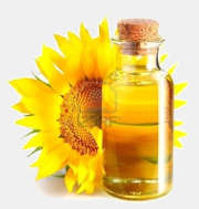 Sunflower oil not refined syrodavlenny
