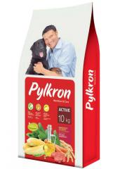 Forage PILKRON the ASSET full for dogs
