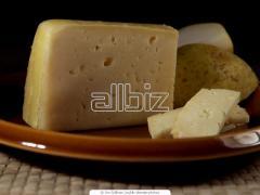 "Сыры полутвёрдые, Сыр сычужный полутвердый """