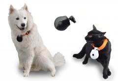 Высоко-качественый ошейник с камерой для собак и кошек