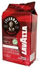 Кофе в зернах Лавацца Тиерра Lavazza TIERRA