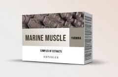 Marine Muscle - порошок для повышения выносливости и роста мышц