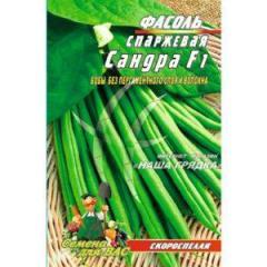 Квасоля спаржева Сандра F1 15 шт. насіння