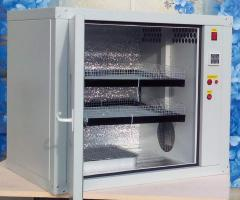 Incubatory and output incubator for any poultry