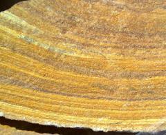 Sandstone tiger. Luhansk stone