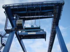 Cranes are semi-goa