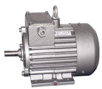 Electric motors crane DMT and AMT series