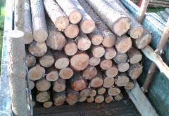 Wood round timber
