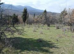 Продажа земельного участка, площадью - 0,0800 га в