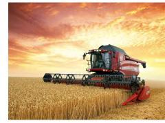 Sale grain both in the market of Ukraine, and