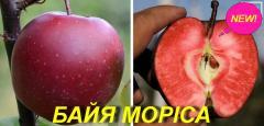 """Саженцы яблони """"Байя Мариса"""" (Красная"""