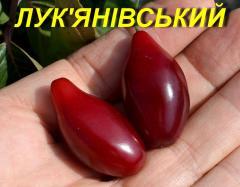 "Саджанець Кизилу \""Лук\'янівський\"""