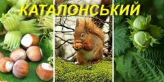 """Фундук \""""Каталонський\"""" 2 р."""