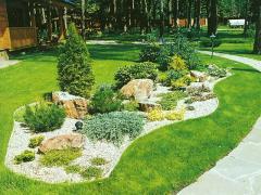 Gardening of a garden, landscaping