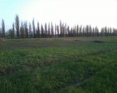 Забирье, участок 15 соток. Киево-Святошинский