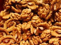 Орехи. Орехи грецкие.