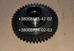 Шестерня привода НШ-10 Т-25 (z-43)