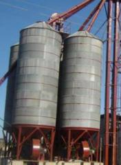 Complessi di lavorazione di grano
