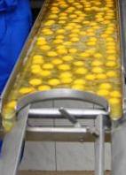 Жовток яєчний рідкий термостабільний