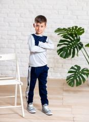 Трикотажный спортивный костюм мальчику брюки на
