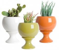 Горшки для цветов ( пластмассовые, керамические)