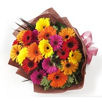 Gerbera bouquet, bouquets and compositions from