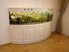 Aquariums oval production sale delivery