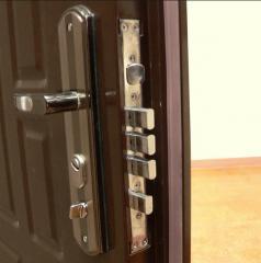 Двери входные металлические по индивидуальным