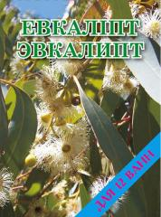 Concentrate for bathtubs the Eucalyptus 500 gr