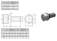 Wheel bolts and nuts for disks