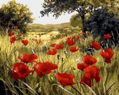 Картина по номерам Q1432 Маковая поляна. Худ. Мари