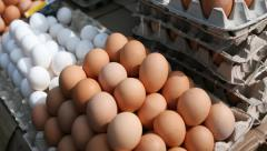 I will sell eggs wholesale