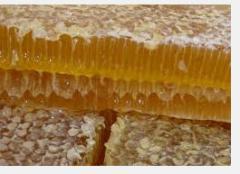 Honey with propolis to buy Ukraine