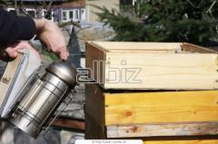 Инструменты для пчеловодства