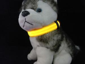 The shining collars for dogs and cats.