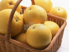 Sale of citrus fruit at wholesale prices