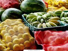 Tropical fruit wholesale cheap