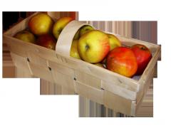 Корзинка для ягод и фруктов, Тара для ягод, ЧП, Тернопольская область
