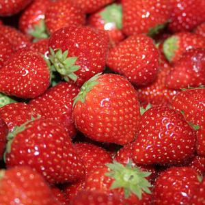 Клубника, клубника оптом, ягоды клубники купить