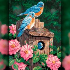 TWD20016L Набор алмазной вышивки Райские Птицы
