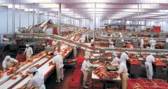 Оборудование для переработки мясных продуктов,